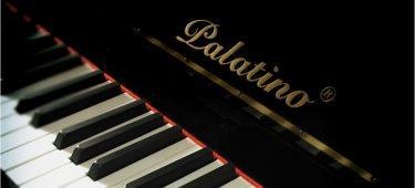 Piano Palatino – Uy Tín – Chất Lượng – Giá hợp lý